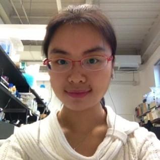 Dr. Yuan Zhang